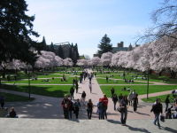 U_washington_2