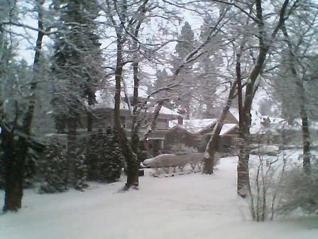 Snow_23_dec_06